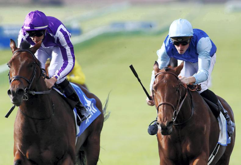 Persian King on course for 2000 Guineas – but French equivalent not ruled out