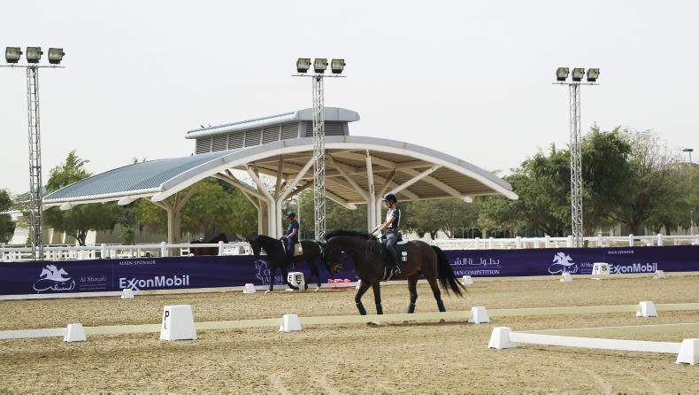 PONY TALES:  Nolan on dressage duty in Doha