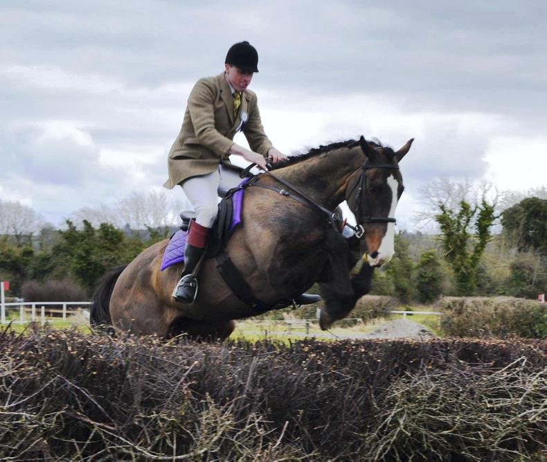 AROUND THE COUNTRY:  Punchestown gears up for the hunters!