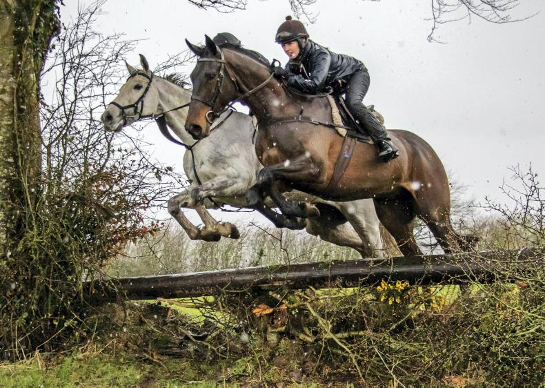 IRISH HORSE WORLD FIXTURES, MARCH 9th 2019