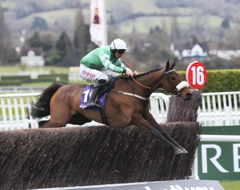 CHELTENHAM 2019: Percy to silence Kelly's doubters