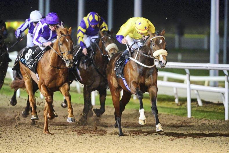 DUNDALK WEDNESDAY: Playa Del Puente notches listed success