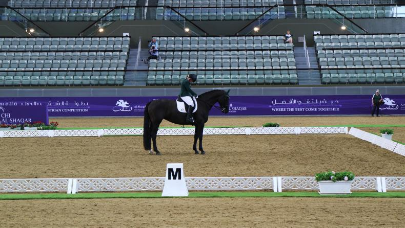 PARA DRESSAGE: Kerr-Horan best of Irish on opening day in Doha