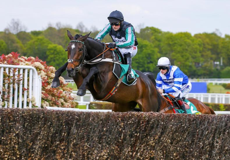 CHELTENHAM 2019: Hard to oppose top chaser Altior