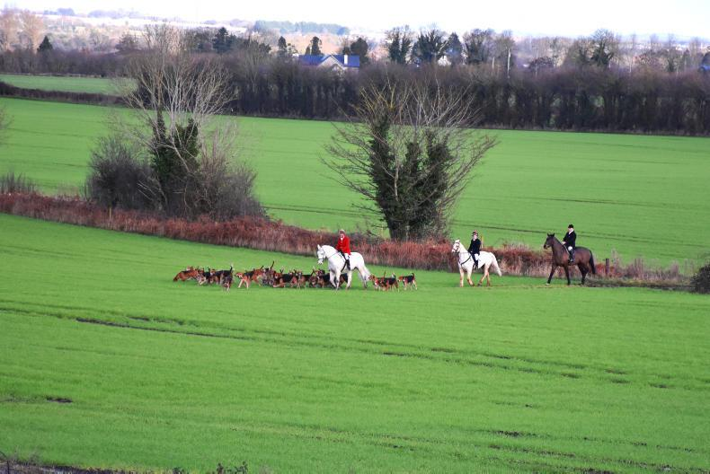 HUNTING:  Hats off to the Brosna Foxhounds!