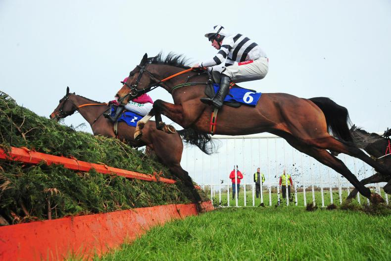 GOWRAN PARK SATURDAY: Holden's Patriot can progress