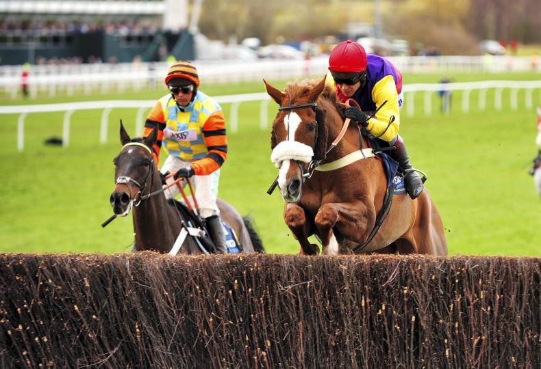 CHELTENHAM: 10 things to consider before having a Cheltenham bet