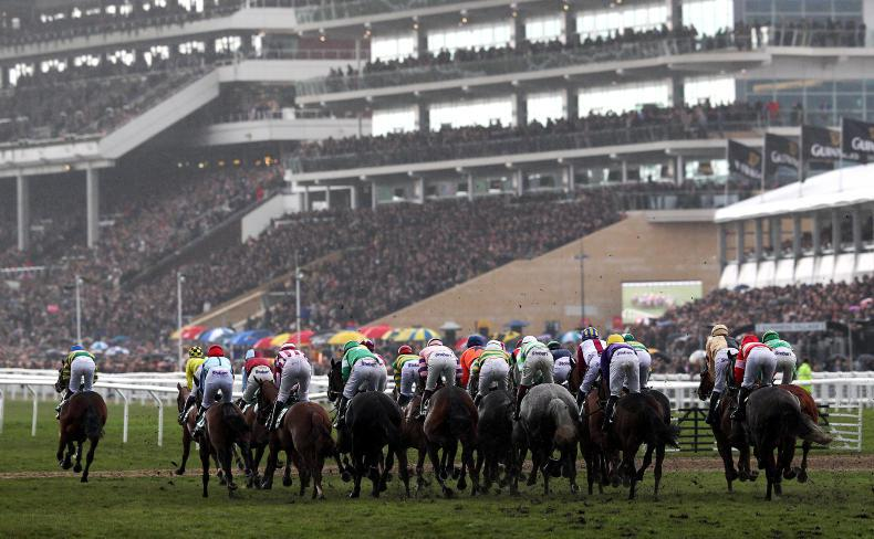 CHELTENHAM TIPS: Your free guide to the first day of the Festival