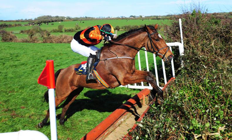KILLINICK HARRIERS: LINGSTOWN SUNDAY: Festival Opera takes the banks contest