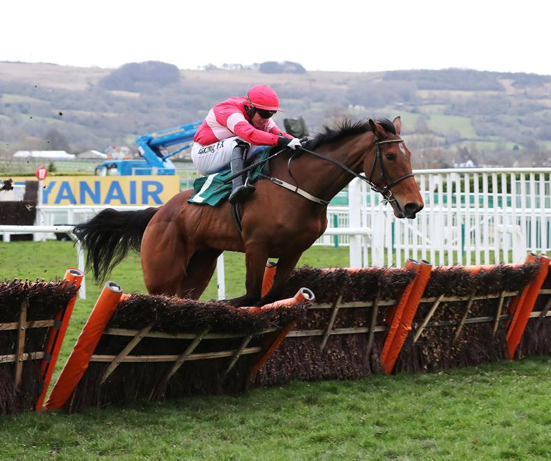 CHELTENHAM 2019: Laurina does it her way