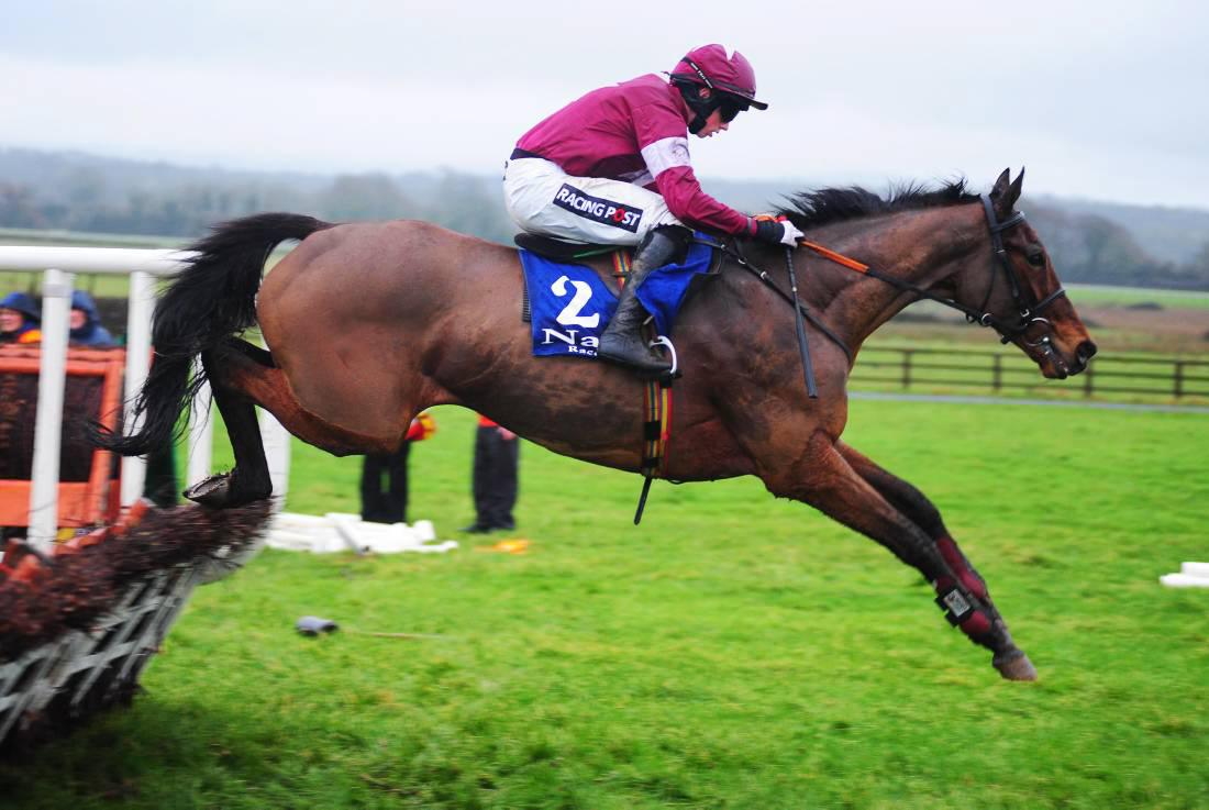 FAIRYHOUSE SATURDAY: 