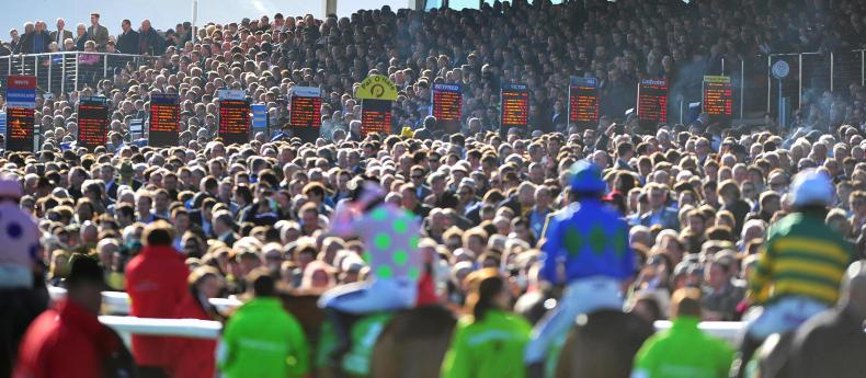 CHELTENHAM TIPS: Your free guide to all seven races on Thursday's card