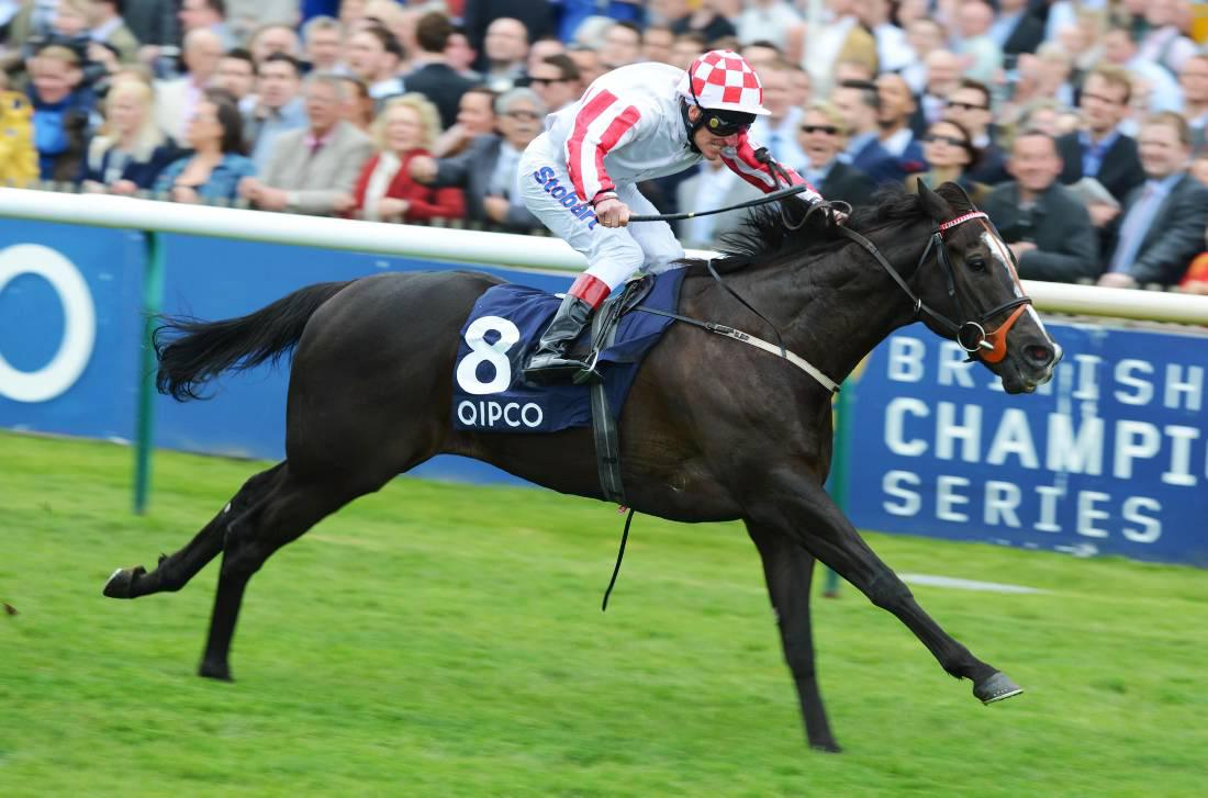 Sole Power and Gordon Lord Byron lead Irish challenge in Hong Kong