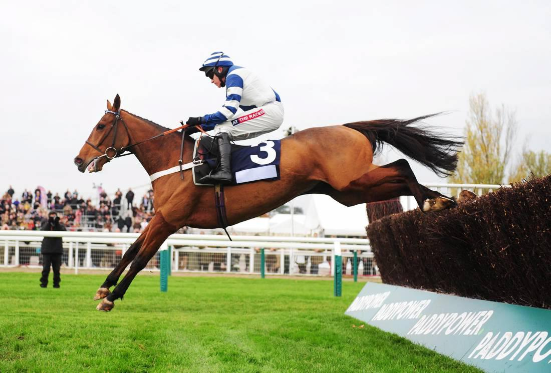 Top National Hunt stock at Goffs