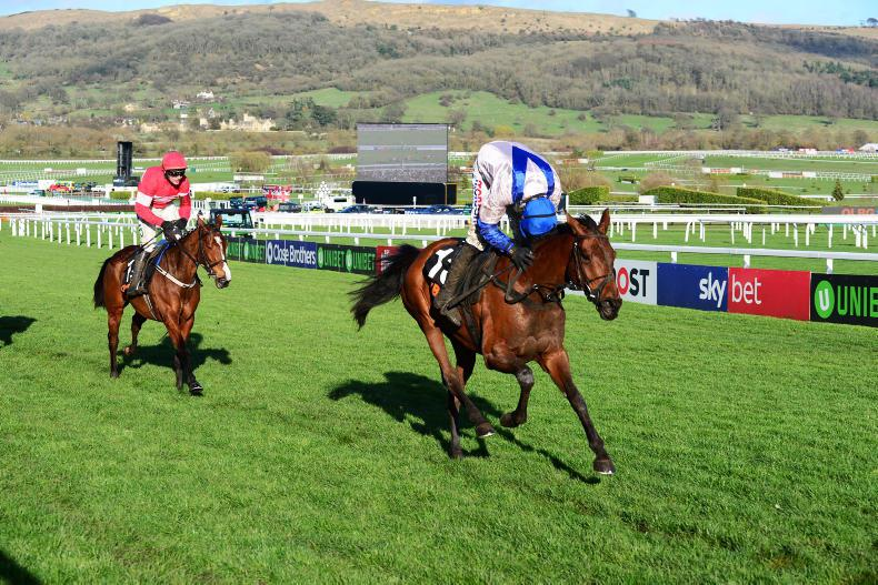 CHELTENHAM TUESDAY: Roksana steps up as Benie crashes out