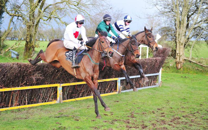 NORTH GALWAY FOXHOUNDS - BELCLARE SUNDAY: Galway Glory for Fitzgerald