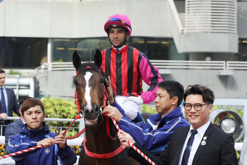 From Limerick to the Curragh to the Hong Kong Derby
