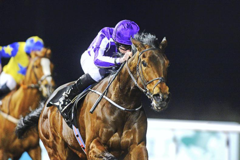 NEWS: Aidan O'Brien to send strong team to Hong Kong