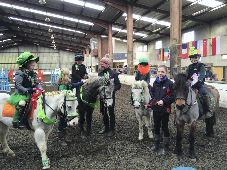 PONY TALES:  Clonshire goes Green for Paddy's Day