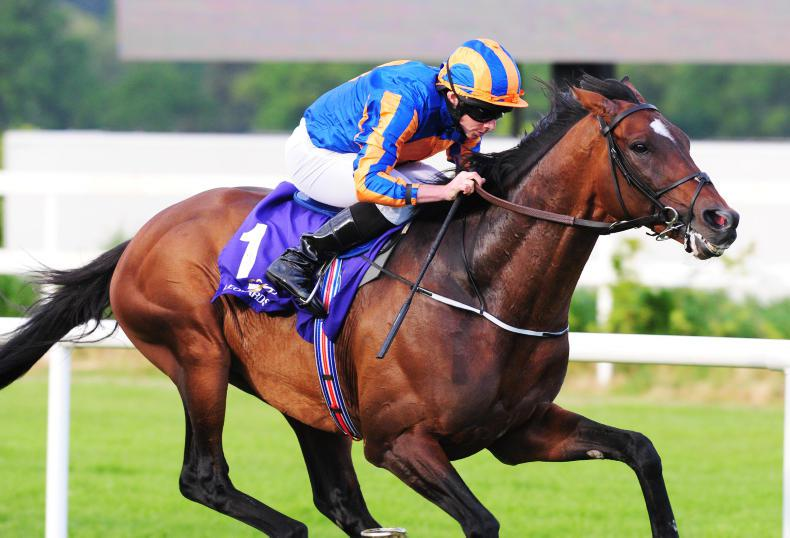 SIRE REVIEWS: Standing at Castlehyde Stud: Order Of St George