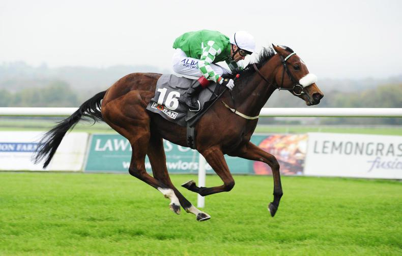 NAAS SUNDAY: Yulong Gold Fairy ready for more magic