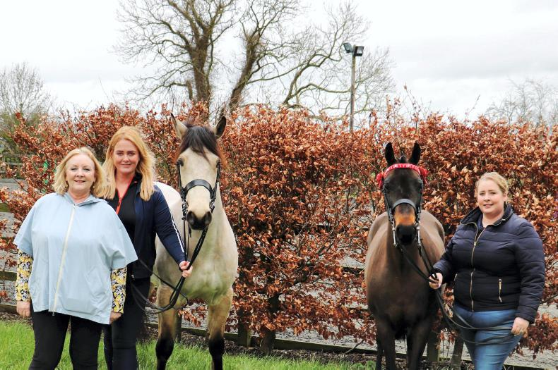 PONY TALES:  New show hosted at Greenogue Equestrian