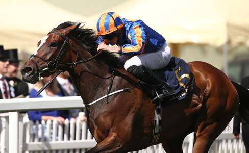 Magic Wand leads O'Brien's select team for Dubai