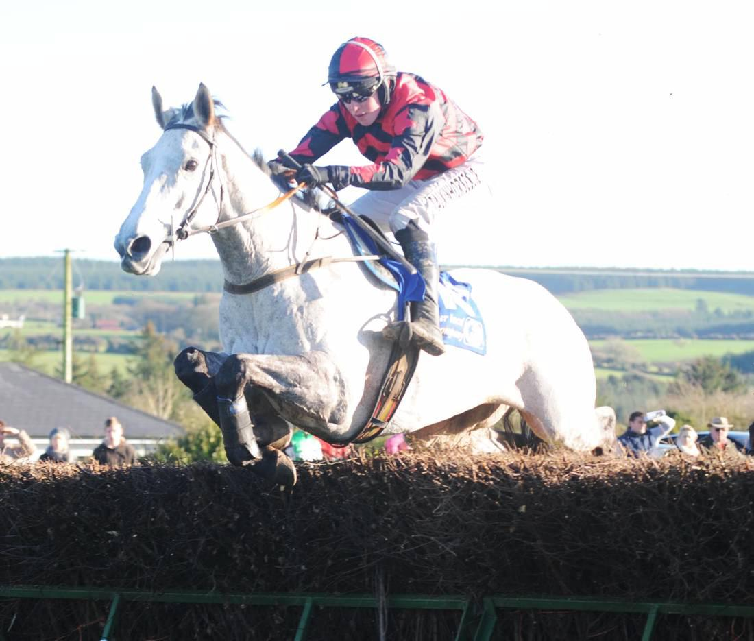 Smart young jumpers at Cheltenham