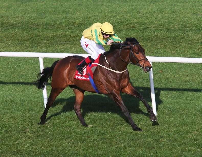 BREEDING INSIGHTS: Lyons gets improvement from Stoute cast-off