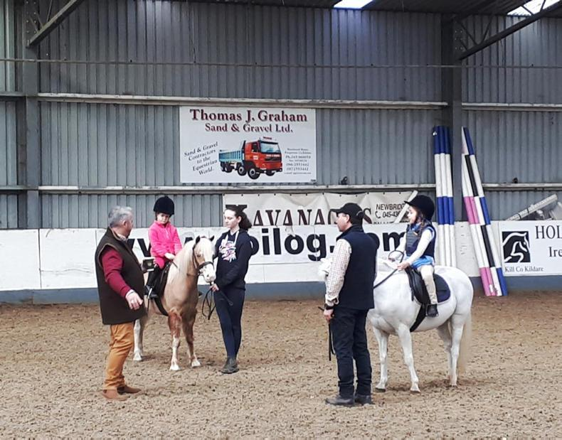 AROUND THE COUNTRY:  Welsh ponies showing the way