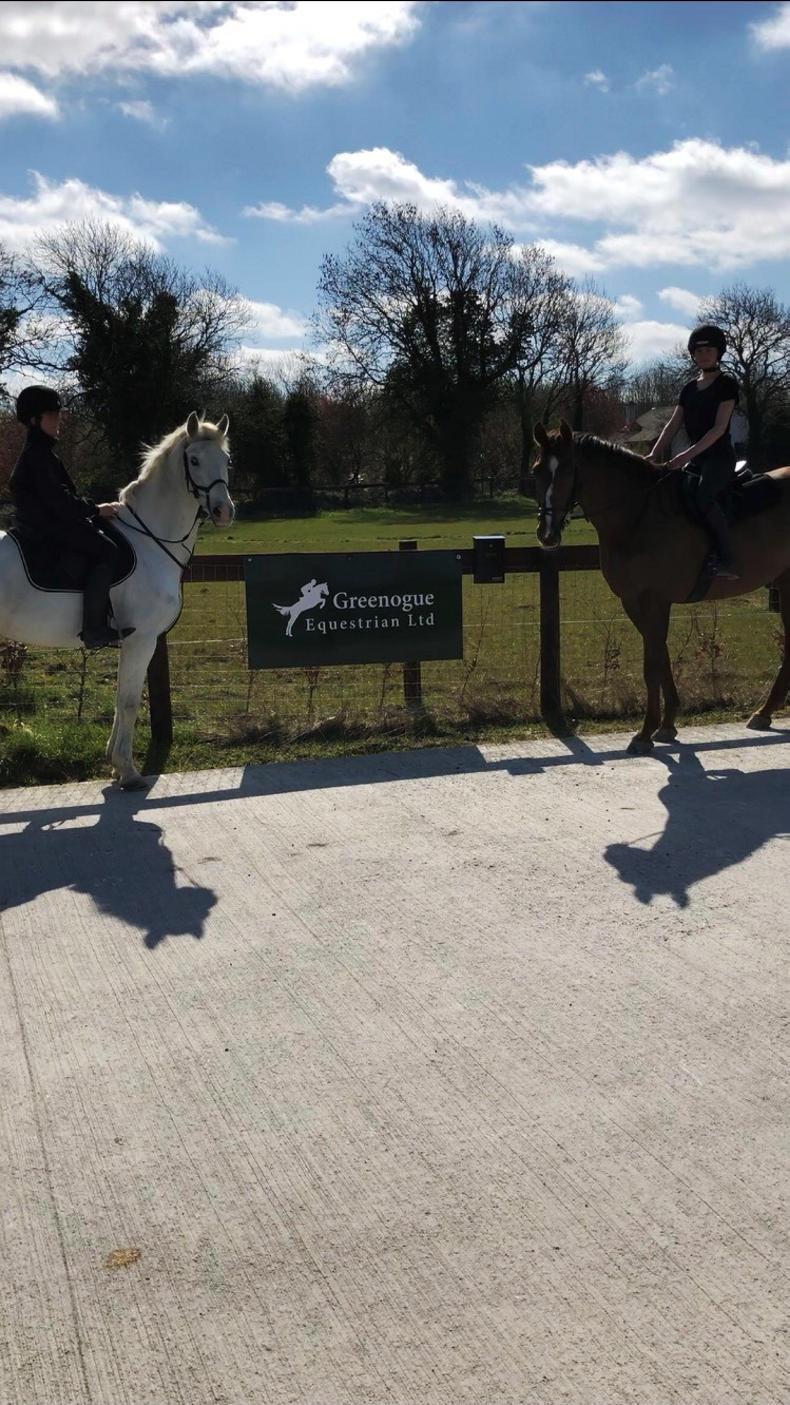 PONY TALES:  Big plans for Greenogue Equestrian!