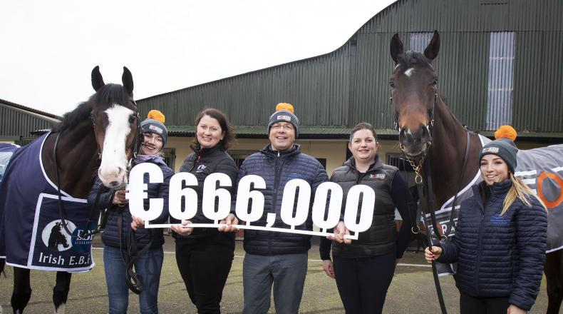 WATCH: Expanded Foran Equine Irish EBF Auction series launched