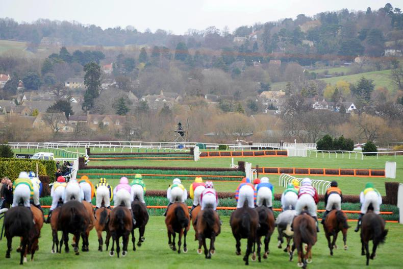 THE WEEK THAT WAS: Lessons learned from Cheltenham bans