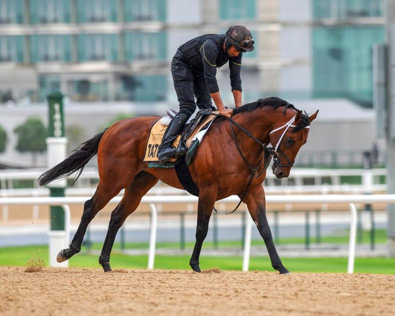 DUBAI WORLD CUP NIGHT: Marnane's Key to Golden Shaheen