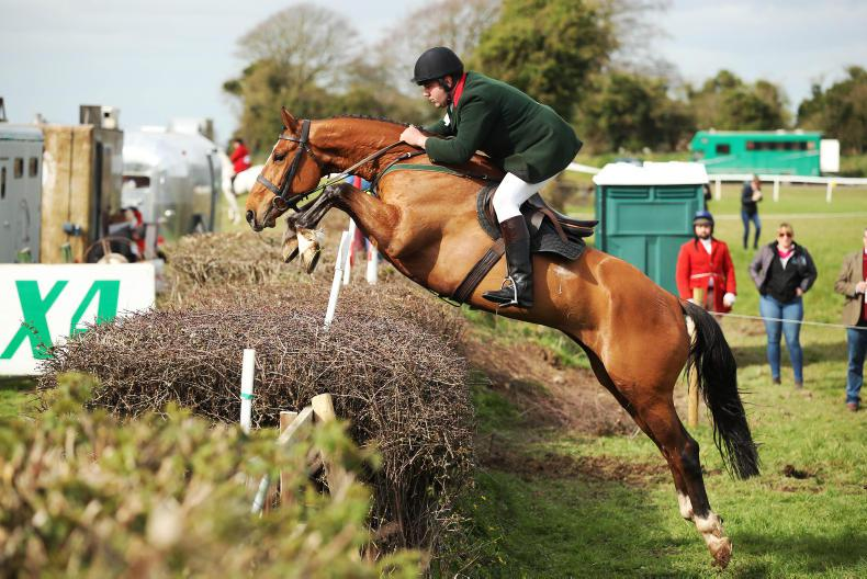 AROUND THE COUNTRY: Huge turnout for hunter show at Punchestown