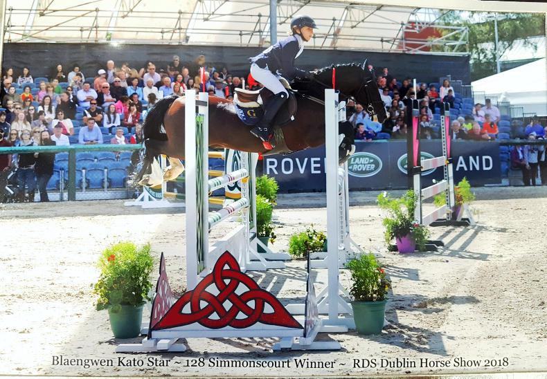 ADVERTORIAL:  Gateau Stables delivering star performers