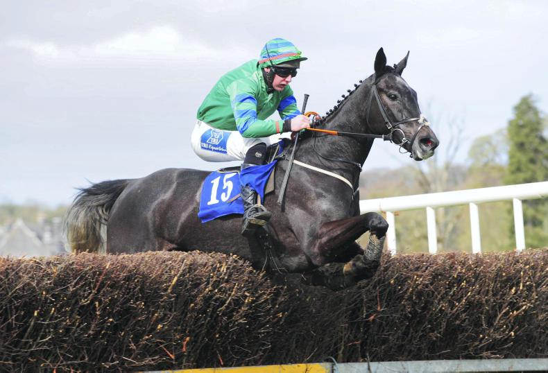 SALE PREVIEW: Hoping to emulate Samcro and Topofthegame