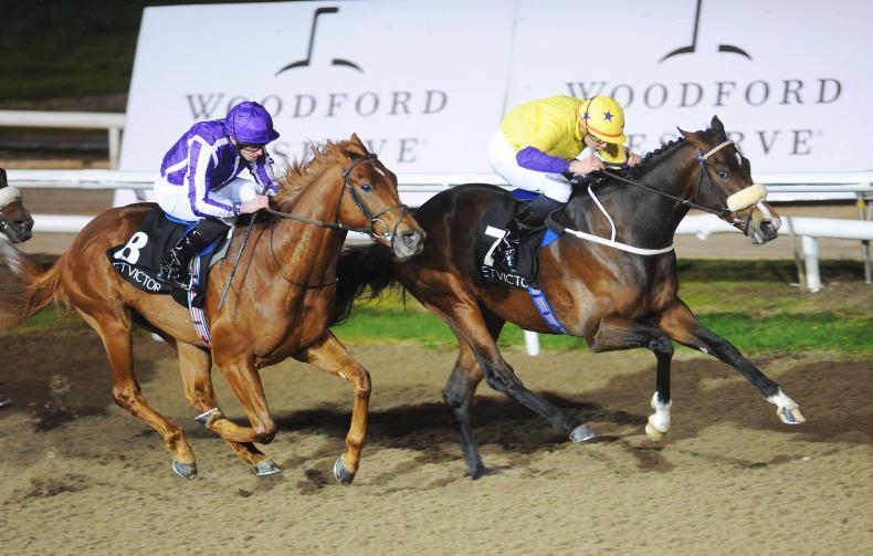 SIMON ROWLANDS: Big Impression made at Lingfield