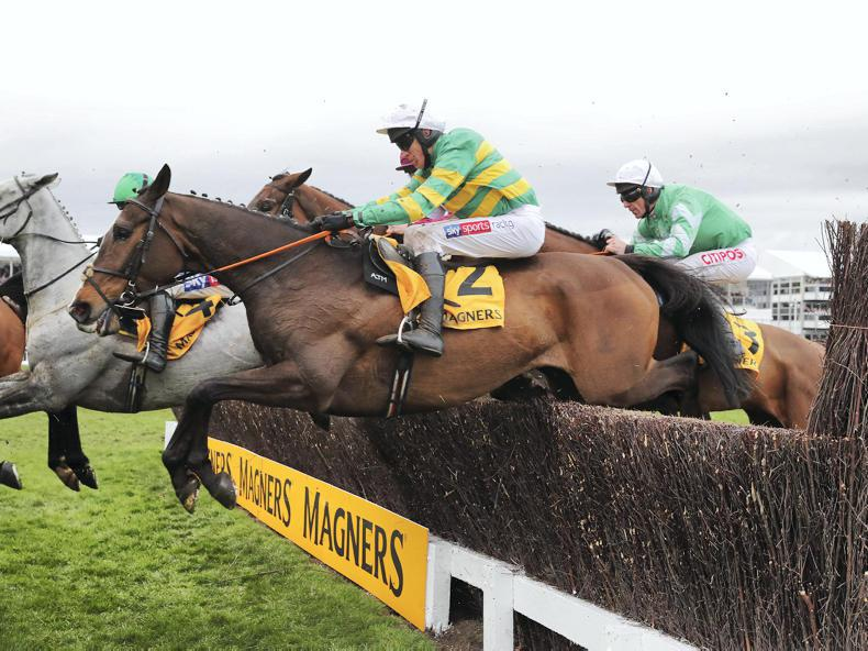 GRAND NATIONAL: Irish-trained horses lead Grand National betting