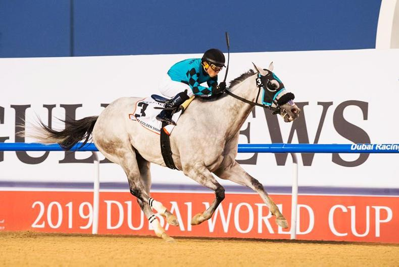 DUBAI WORLD CUP: Try, try and try again ends in victory
