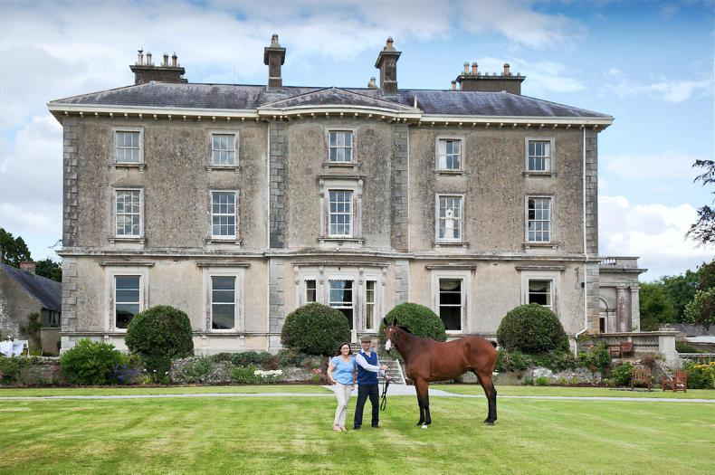 PONY TALES:  Great prizes at Meath Hunt's Hunter Trials!
