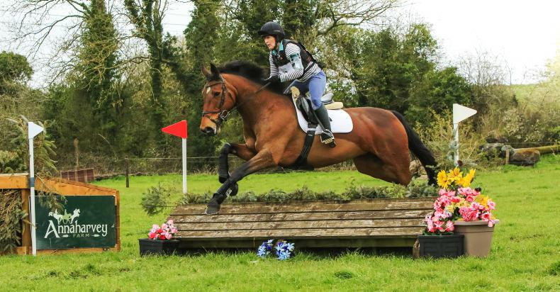 PONY TALES:  Aisling's hard to beat!