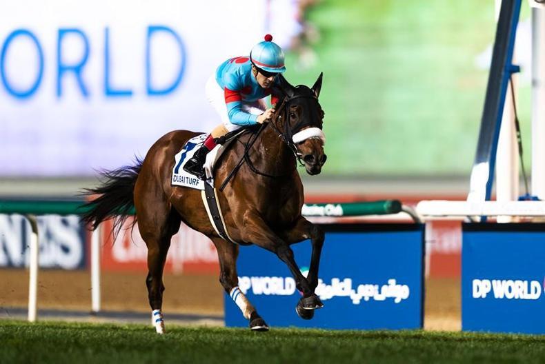 DUBAI WORLD CUP: Japan's Eye on the world stage