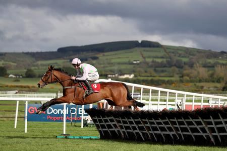 Faugheen found to have fibrillating heart following Aintree disappointment