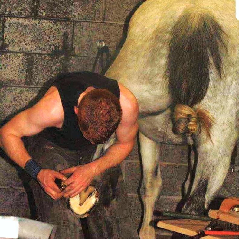 HOOFCARE FEATURE 2019: Q&A with master farrier Kevin Rooney