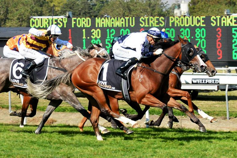 NEW ZEALAND: Yourdeel in Group 1 Sires' Produce