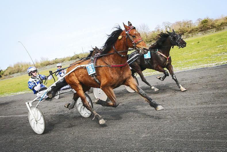 HARNESS RACING: Abraham begins where he left off