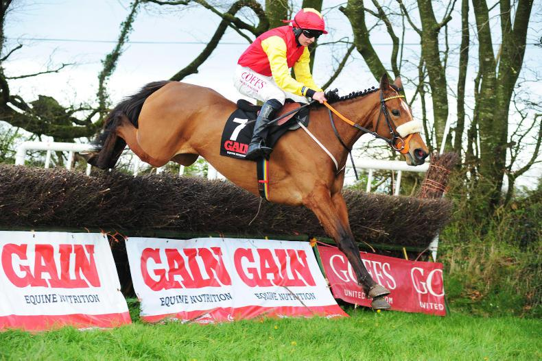 BALLYNOE SUNDAY: Shark's Dozen leads all the way to gain Mares' Final prize