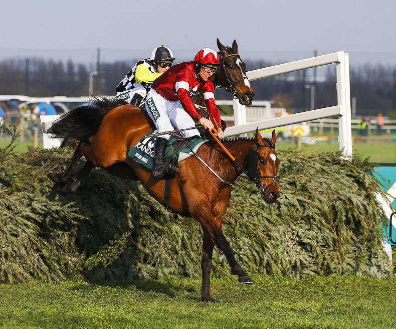 GRAND NATIONAL: Irish horses well treated for National bid