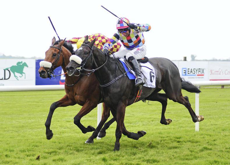 FAIRYHOUSE SUNDAY: Mister Blue Sky battles on to win